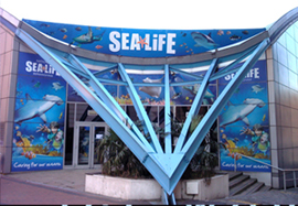 National SEA LIFE Centre Local Attractions Leisure Breaks ...